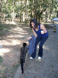 Ana Clara a repartir canjica com o macaquinho. Clique para ampliar.